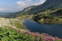 Der See in den Bergen Lizenzfreies Stockbild