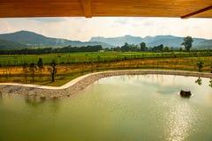 Der See in Hinoki-Land stockbild