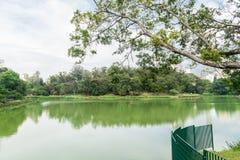 Der See im Aclimacao-Park in Sao Paulo Lizenzfreie Stockbilder