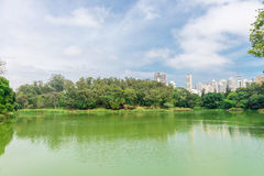 Der See im Aclimacao-Park in Sao Paulo Lizenzfreies Stockfoto