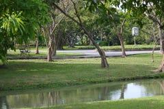 Der See im Garten lizenzfreies stockbild