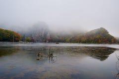Der See im Nebel morgens szenisch stockfotografie