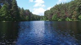 Der See im Sommerwald stock footage
