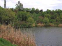 Der See und das grüne Ufer und der Abhang Stockfotografie
