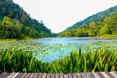 Der See unter Bergen Stockbilder
