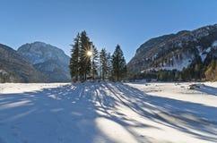 Der See von Predil Raibl bedeckt durch den Schnee Lizenzfreies Stockbild