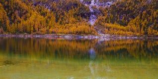 Der See Zhara mit perfekter Reflexion Stockbild