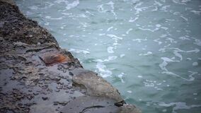 Der Seewellenbrecher wird durch Wellen in der Zeitlupe gewaschen stock footage