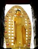 Der Segnungsdeityof Lord Buddha Stockbilder