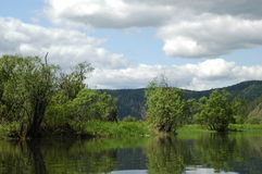Der sibirische Gebirgsfluß Mana Lizenzfreies Stockbild