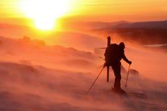 Der Skifahrer Lizenzfreie Stockfotos