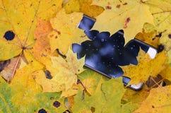 Der Smartphone fiel in Herbstlaub stockfoto