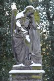 Der Snowy-Engel im Friedhof stockbilder