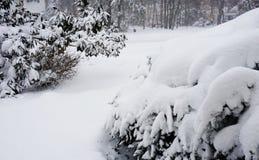 Der snowzilla Jonas-Blizzardschneewinter stürmen am 23. Januar 2016 Lizenzfreie Stockbilder