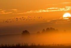 Der Sonnenaufgang Lizenzfreie Stockfotos