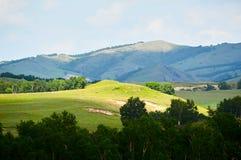 Der Sonnenschein auf dem Hügel Lizenzfreie Stockbilder