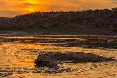 Der Sonnenuntergang auf Flussufer Stockbild