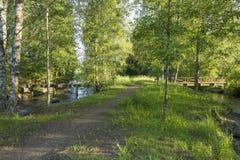Der sonnige kleine Park Lizenzfreie Stockfotos
