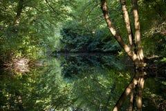 Der Spiegel des Sees Neuer Stockfotos