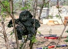 Der Spielzeugaffe bleibt zu Hause auf einem Baum im Yard in der Stadt Stockfotos