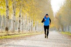 Der Sportmann, der draußen in weg von Straßenspur läuft, rieb mit Bäumen unter schönem Herbstsonnenlicht Lizenzfreies Stockbild