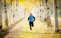 Der Sportmann, der draußen in weg von Straßenspur läuft, rieb mit Bäumen unter schönem Herbstsonnenlicht Lizenzfreies Stockfoto