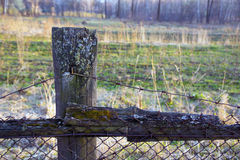 Der Stacheldraht am alten Zaun Stockbild
