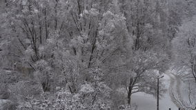 Der Stadtschnee fiel stock video footage