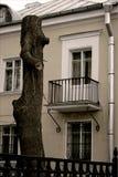 Der Stamm eines Baums ist wie eine Frau Stockfotografie