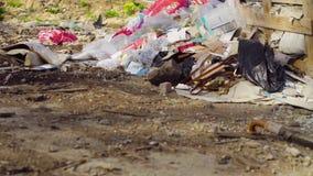 Der Stapel des Abfalls auf der Müllgrube Lizenzfreie Stockbilder