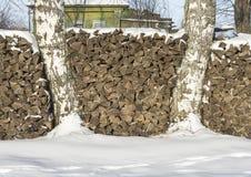 Der Stapel des Brennholzes Stockbilder