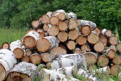 Der Stapel des Brennholzes Lizenzfreie Stockbilder