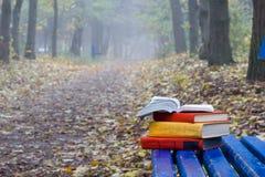 Der Stapel des Buches des gebundenen Buches liegend auf einer Bank am Sonnenuntergangpark verwischte Naturhintergrund Lizenzfreie Stockfotos