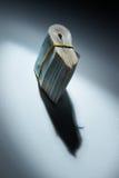 Der Stapel des Geldes: Schatteneinkommen Stockbild