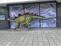 Der Stegosaurus Stockfoto
