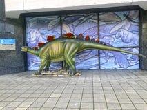 Der Stegosaurus Lizenzfreie Stockbilder