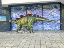 Der Stegosaurus Stockbilder