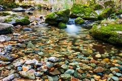 Der Stein im Wasser im Herbst szenisch stockbilder