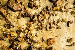 der Stein oder der Felsen auf dem Strand und dem Sand im warmen Ton Stockfoto
