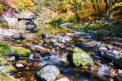 Der Stein und der Bach im Herbst szenisch lizenzfreies stockfoto