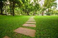 Der Steinblock mit grünem Gras Stockfotografie