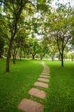 Der Steinblock mit grünem Gras Stockbild
