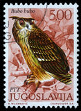 Der Stempel, der in Jugoslawien gedruckt wird, zeigt europäischen Eagle Owl Stockfoto