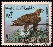 Der Stempel, der im Afghanistan gedruckt wird, zeigt Steinadler Stockbilder