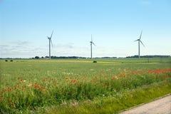 Der Straßenrand des Weizenfeldes in Normandie Lizenzfreies Stockfoto