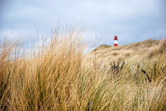 Der Strand u. der Leuchtturm stockfoto