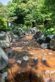 Der Strom fließen Wald oder natürlichen Park im Freien durch lizenzfreie stockfotografie