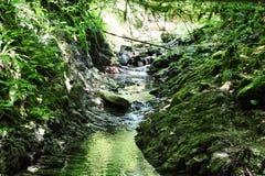 Der Strom fließt eine schmale Schlucht in den Bergen durch Lizenzfreie Stockfotos