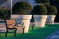 Der Stuhl ist auf einem grünen Gras mit einer Topfpflanze folgendes t Stockbild