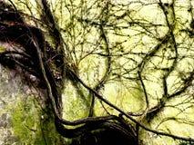 Der Stuhl [Zweige] Stockbilder